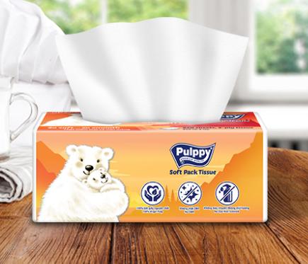 Khăn Giấy Rút Pulppy Polar Bear 250 tờ